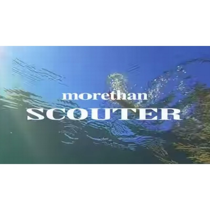 Daiwa Morethan SCOUTER 110F 18.8gr 110mm col. 3841-Over Night